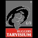 Logo RTarvisum 200px